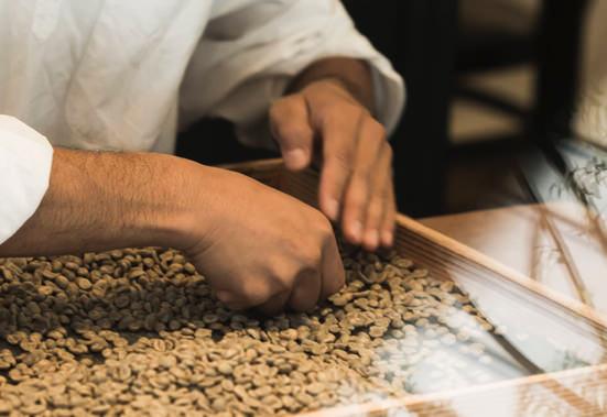 トモノウコーヒー イメージ15